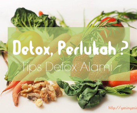 detox, tips detox alami, beauty blogger, blogger kesehatan