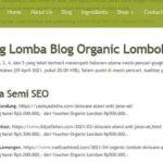 blogger bandung seo pemenang lomba blog skincare