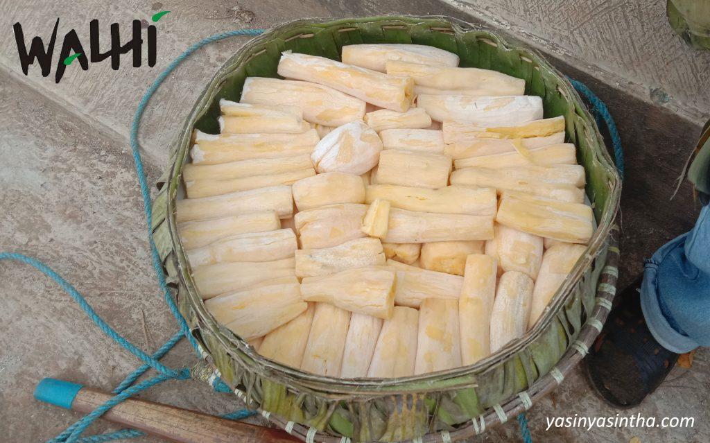 peuyeum singkong - yasinta astuti