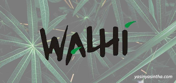 walhi - yasinyasintha