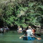 ekowisata papua
